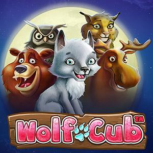 300x300 wolf cub
