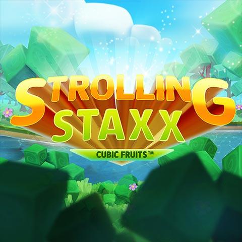Strollingstaxx 480x480