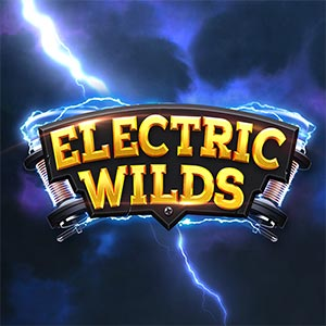 Northern lights electric wilds