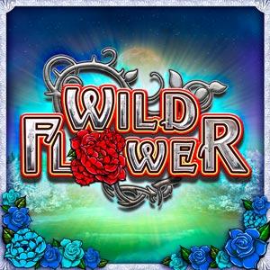 Bgt wild flower