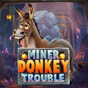 Playngo miner donkey trouble
